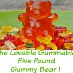 Lovable five pound gummy bear!
