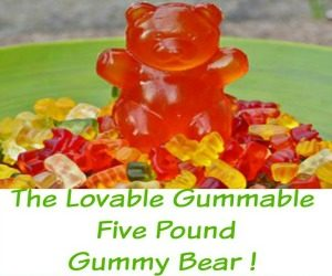 The Lovable Gummable Five Pound Gummy Bear Gift