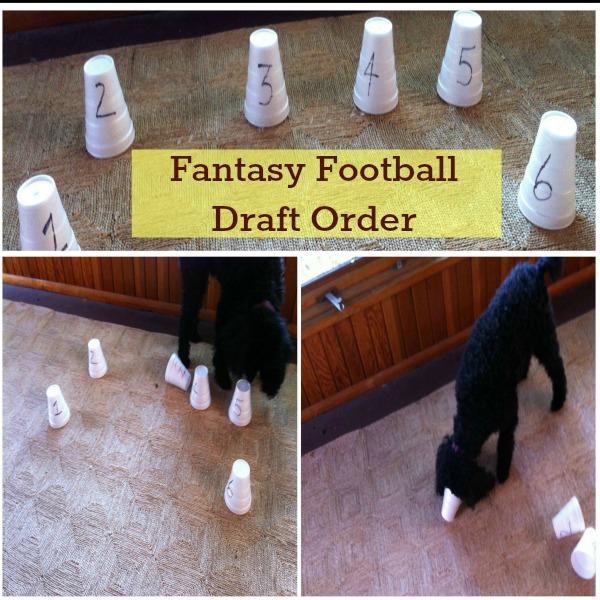Wordless Wednesday : Fantasy Football Draft